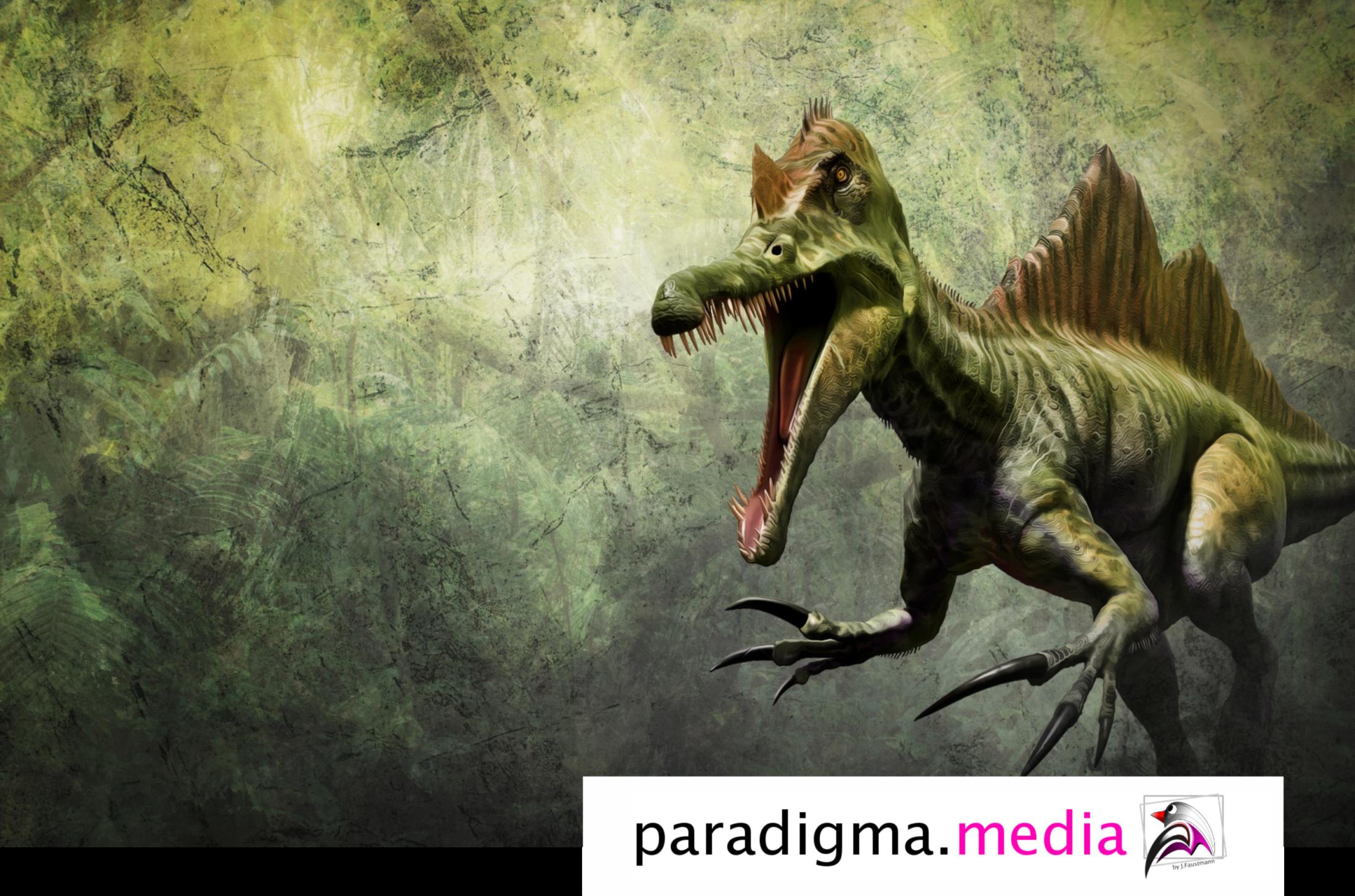 Grafikdesign Paradigma.media Werbung Berlin